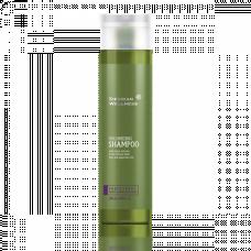 Shampoo Volumen Haar