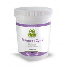 Magnesium + Zink